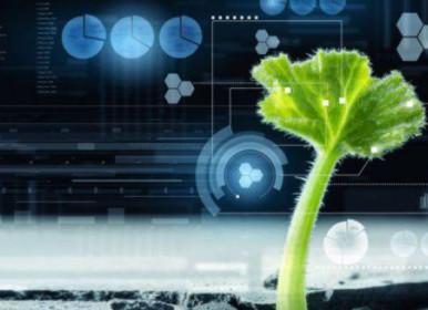 Inscrições abertas para próximo ciclo de aceleração do AgroStart