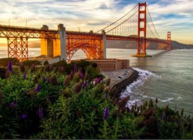 Parceria Inédita com 415Hub, oportuniza seleção de Startups da Unoesc e do Polo Inovale no Vale do Silício